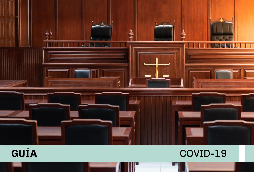 Guía sobre la reactivación del Poder Judicial terminado el Aislamiento Social Obligatorio