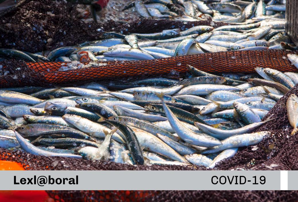Protocolo Sanitarios de Operación ante el Covid-19 para las embarcaciones pesqueras industriales de madera