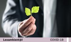 OEFA aprueba Reglamento de acciones de fiscalización ambiental durante el estado de emergencia sanitaria declarada producto del brote del COVID-19