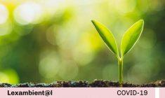 MINAGRI aprueba Lineamientos para la implementación de mecanismos de participación ciudadana en el marco de la evaluación de Estudios Ambientales