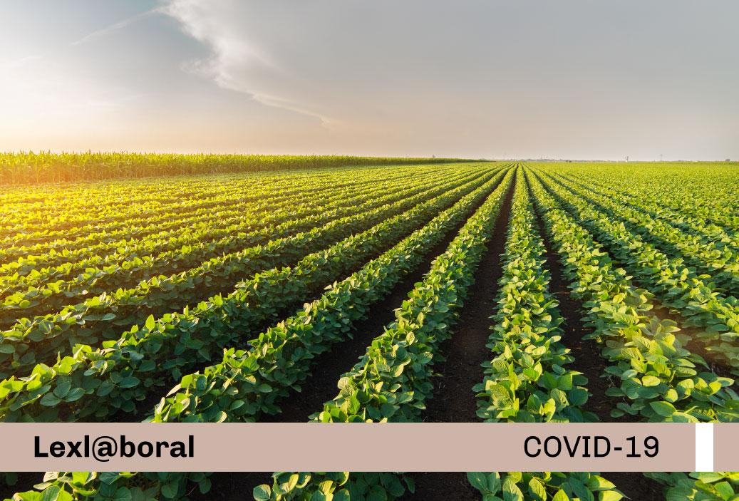 Protocolo de prevención y control frente al Covid-19 en la actividad de titulación de la propiedad agraria y catastro rural