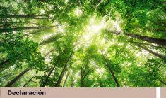 Vanessa Chávarry declaró para El Comercio: Regulan consulta previa para crear Áreas Naturales Protegidas y cambiar su zonificación