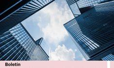 Boletín Derecho de la Competencia – Octubre 2020