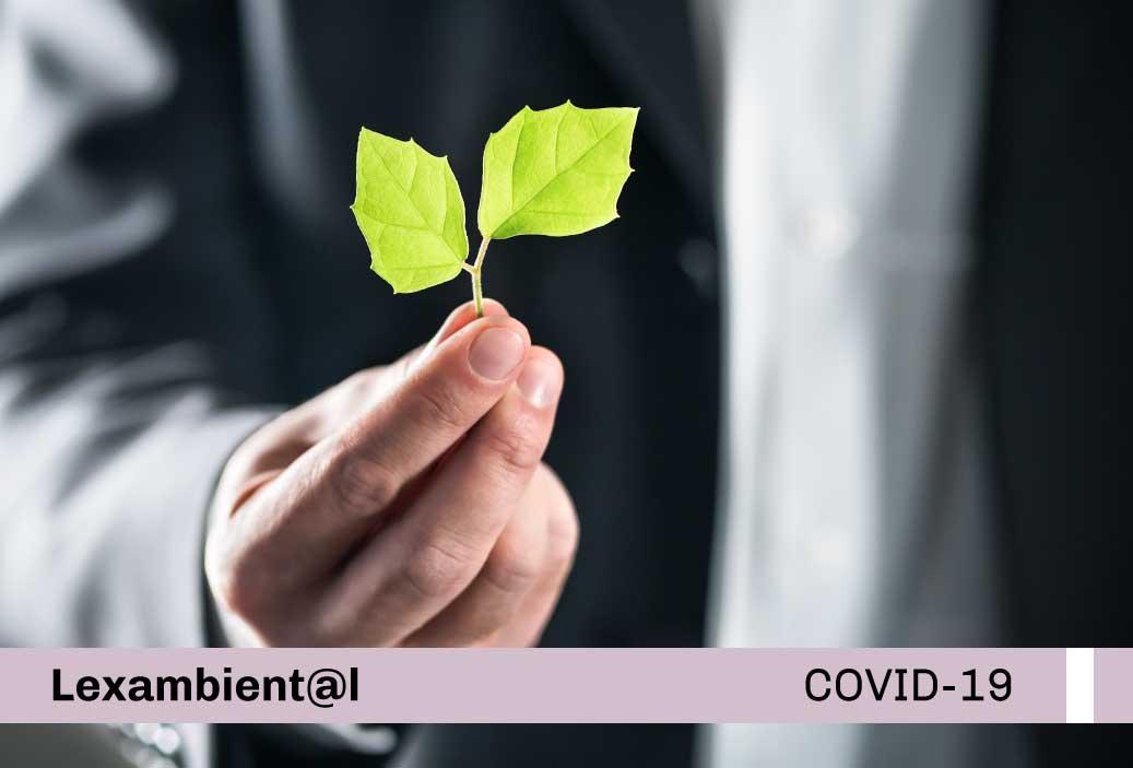 OEFA modifica Reglamento de acciones de fiscalización ambiental durante el estado de emergencia sanitaria declarada producto del brote del COVID-19