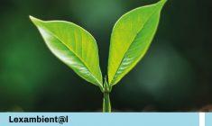 Protección de Defensores Ambientales