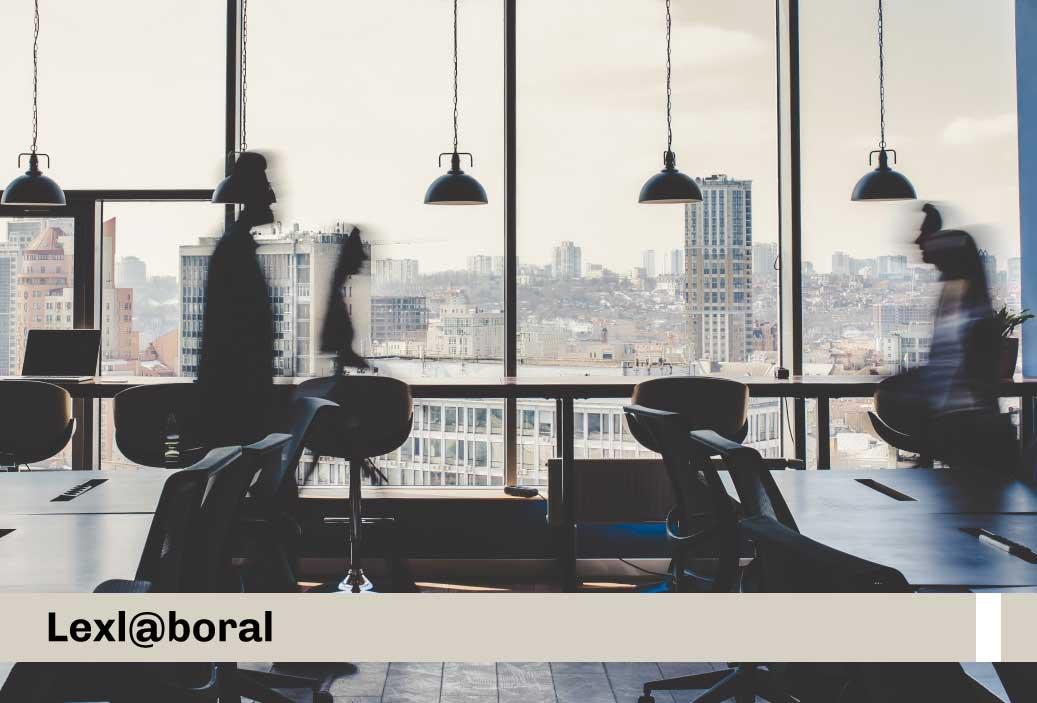 laborables sector público nacional